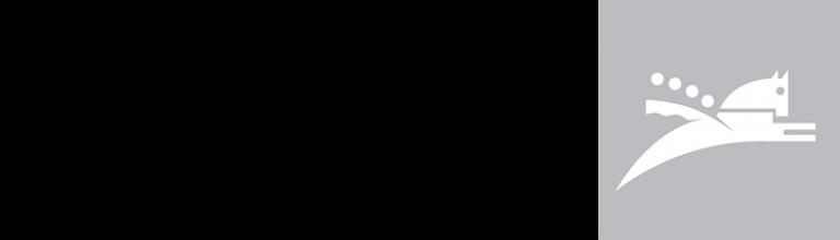 PDM_LOGO_2018_RGB_800X230_PX.png