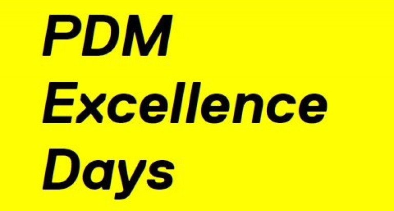PDM excellence header small.jpg